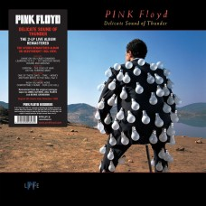 PINK FLOYD - DELICATE SOUND OF THUNDER/180G