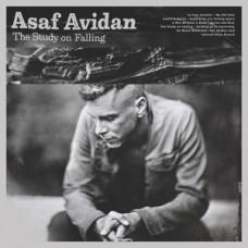 AVIDAN ASAF - STUDYONFALLING