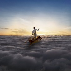 PINK FLOYD - ENDLESS RIVER/180G