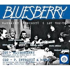 BLUESBERRY - NAHRÁVKYZKONCERTŮ82-84
