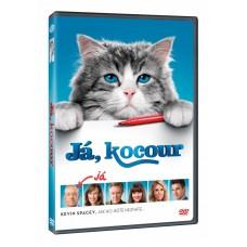 JÁ, KOCOUR - FILM